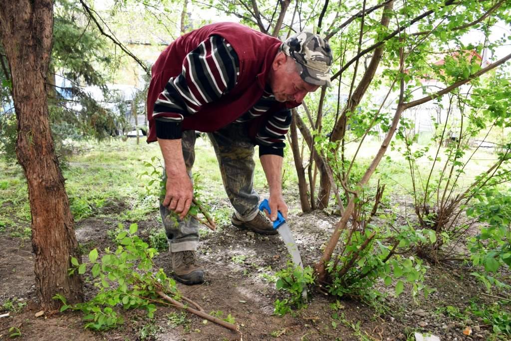 Woltylások ápolják a köztéri kerteket – 3. nap