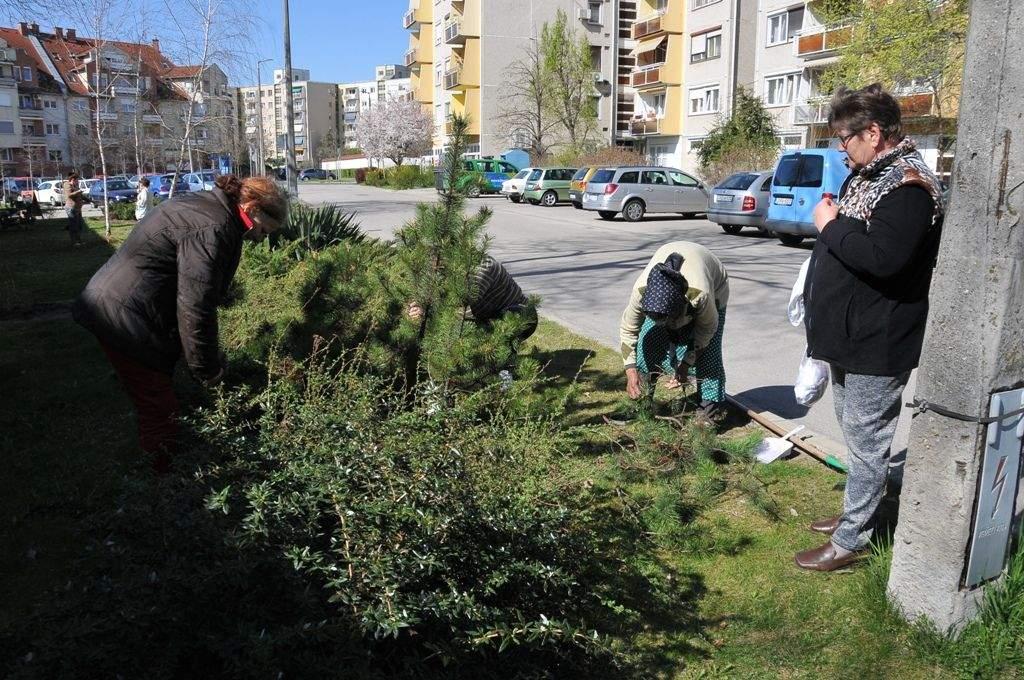 Folytatódtak a kertészeti munkálatok az Egressy utca közterületein