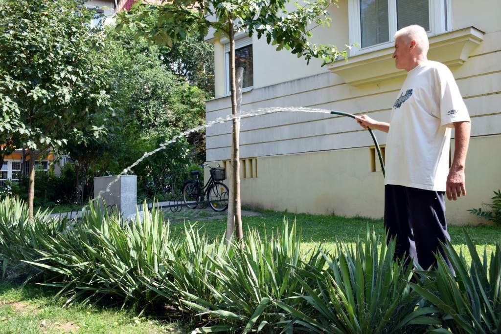 Kertészkedtek a Wojtyla Ház környékén