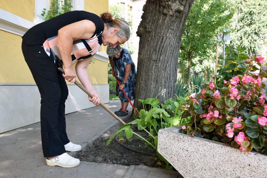 Újból kertészkedtek a Wojtyla Ház környékén