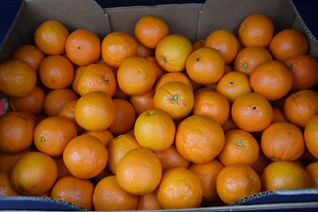 Narancs adomány Gyuris Dávidtól