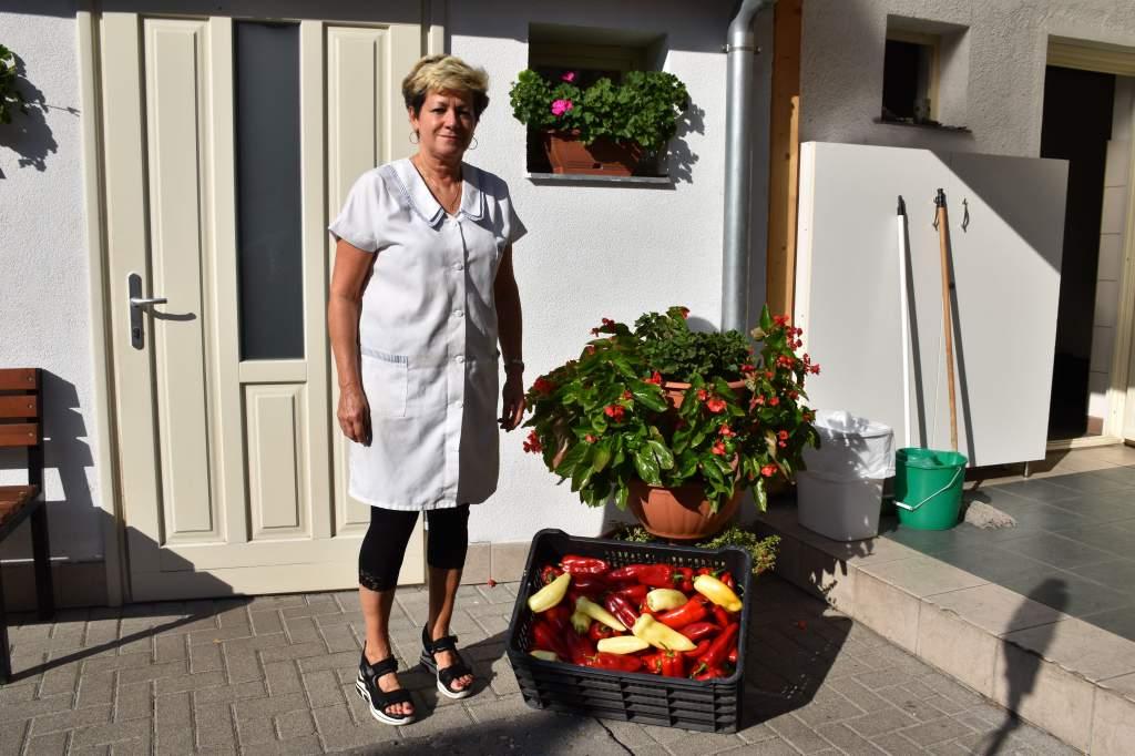 Olga és családja paprika adománya