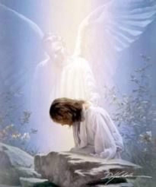 """Napi Evangélium - """"Mester, mi jót kell tennem, hogy eljussak az örök életre?"""""""