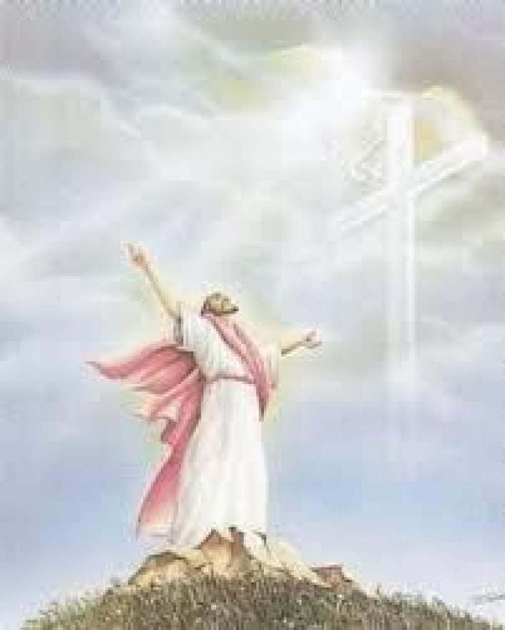 """Napi Evangélium - """"Uram, ne fáradj! Nem vagyok méltó, hogy hajlékomba jöjj."""""""