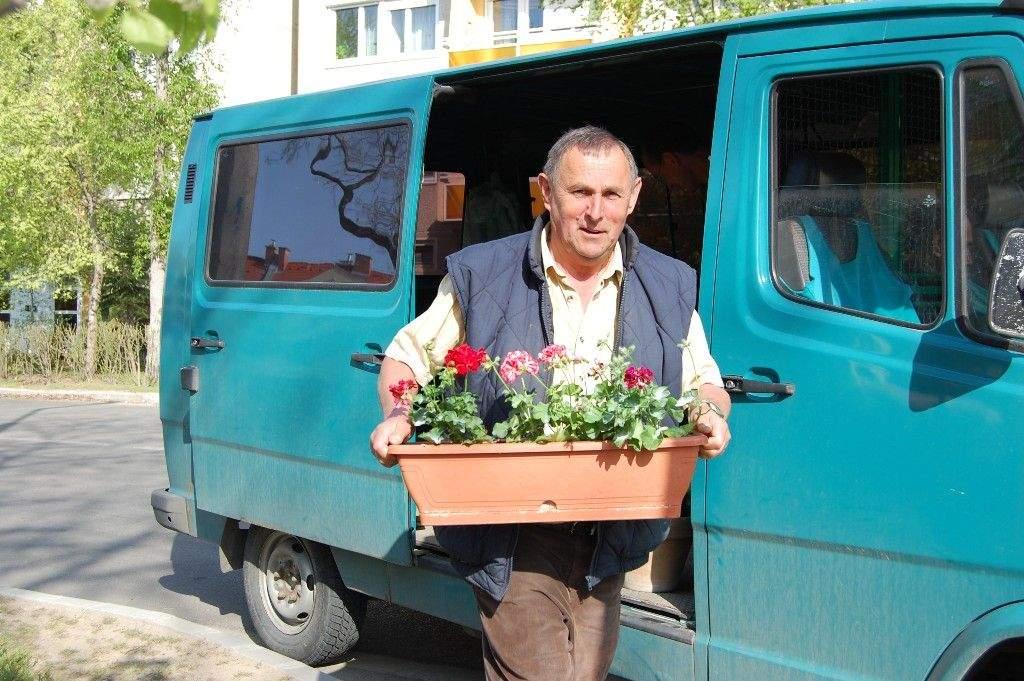 A TAVASZ legszebb napjai: a Wojtyla Ház ablakaiban Gyenes-féle virágok